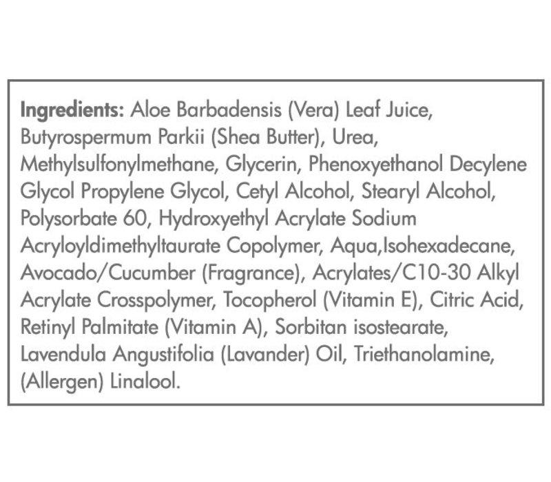 Hydrating Day Cream - Moisturizing and Softening