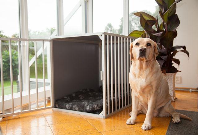 hondenbench kamerkennel m1 dk. Black Bedroom Furniture Sets. Home Design Ideas