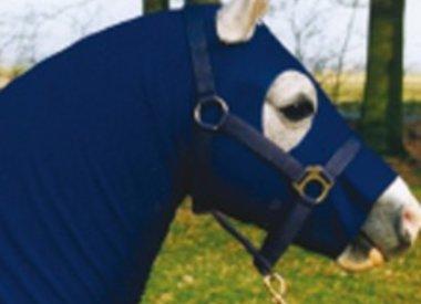 Pony schoon houden