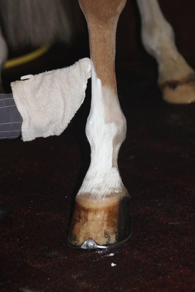 Supreme products Show poeder voor lijf en benen