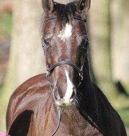 Ponytrends Show hoofdstel gladleder