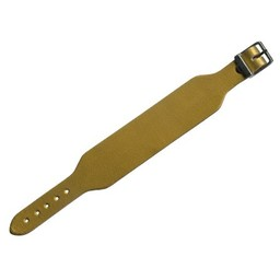 Cuenta DQ leerband gesp goud 30mm