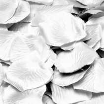 Rozenblaadjes Wit 144 stuks (H8-3-7)
