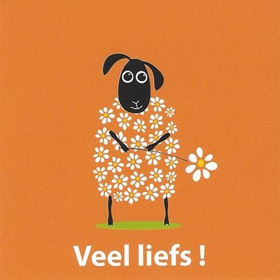 Greeting Card 'Veel liefs'