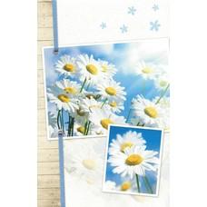 Universal card (11x17cm)