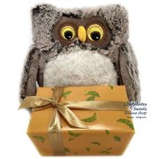 Leonidas 250g chocolates and Plush Owl (18cm)