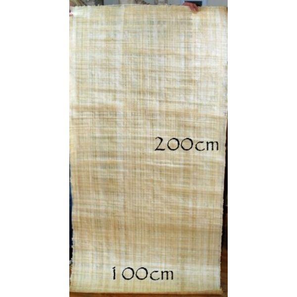 Papyrus sheet 200x100 cm