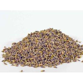 Dried lavender blossom