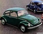 Type 1 Beetle