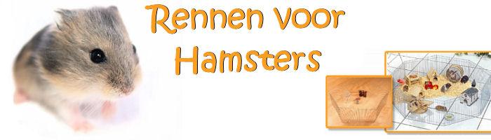Hamster rennen, rennen für Hamster