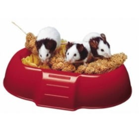 feeding bowls for rodents