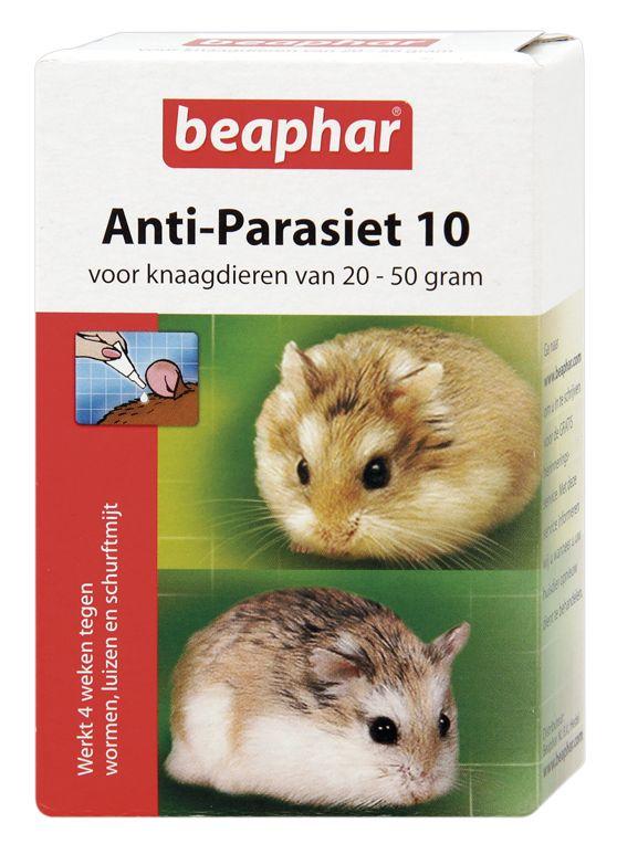 Anti parasiet 10 dwerghamster, hamster