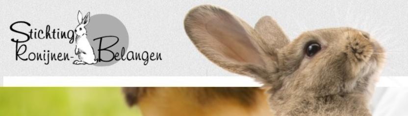 Chippen: ook voor konijnen