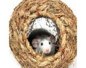 Rat Nest material