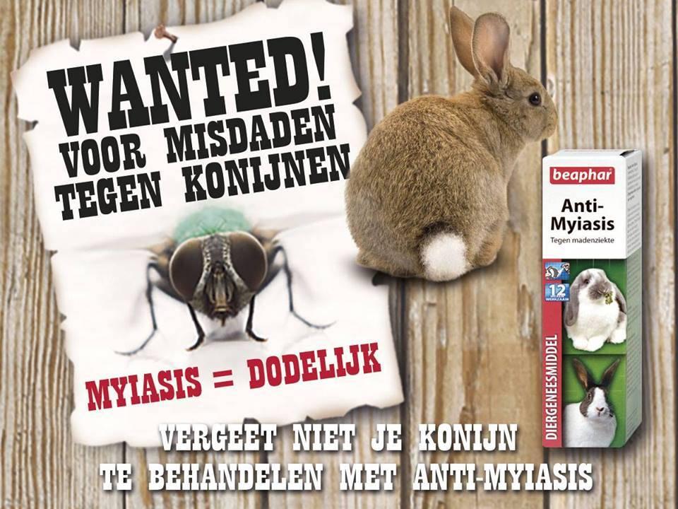 beaphar parasieten myasis konijn
