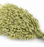 Puik Snacks Oat Sheaf 55 Gramm