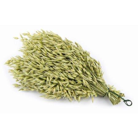 Puik Snacks Haverschoof 55 gram