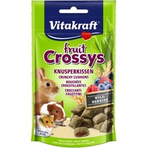 Blueberry Obst Crossys Nagetier
