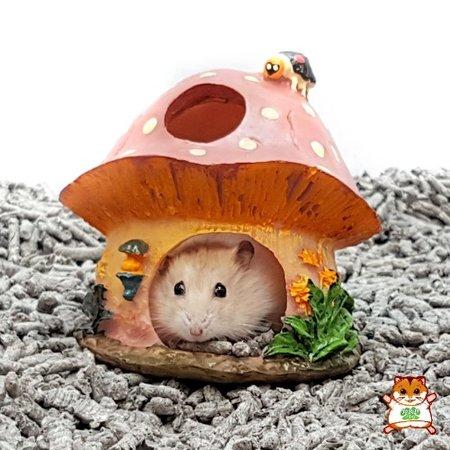 Beeztees Paddenstoel Huisje voor kleine knaagdieren