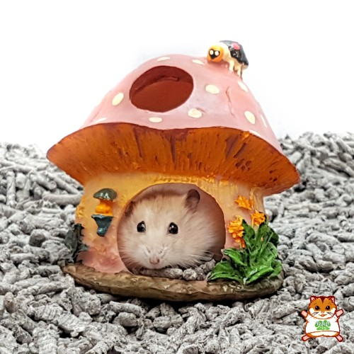 Beeztees Mushroom Cottage for small rodents