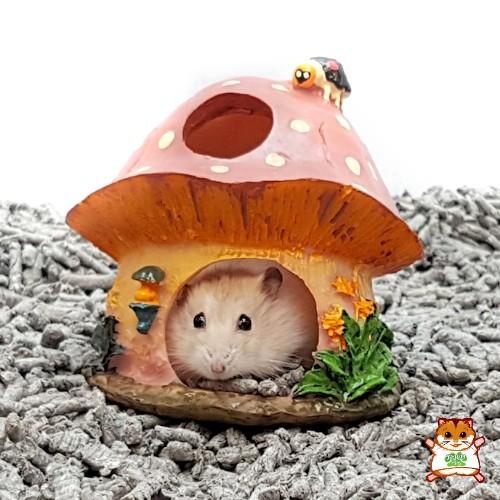 Beeztees Pilz-Haus für kleine Nager