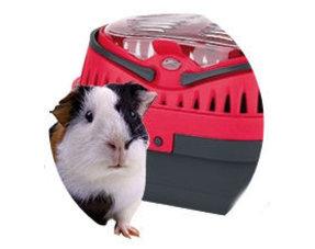 Transportboxen für Meerschweinchen