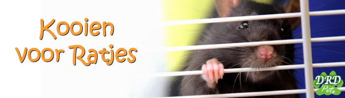 Rat Cage, Cages for Rats
