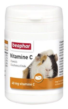 Meerschweinchen Gesundheit Vitamin C