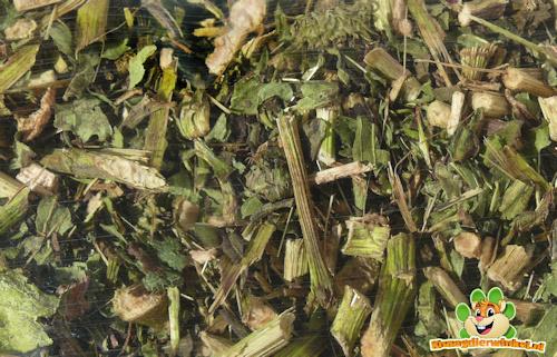 Nagertraum Echinacea 150 Gramm