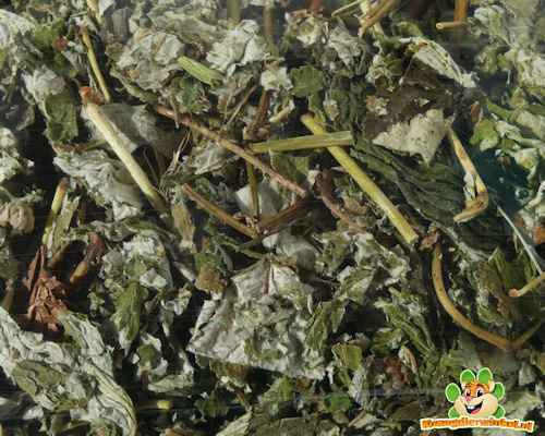 Nagertraum Raspberry leaves 80 gram