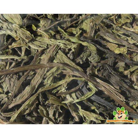 Lower tract Plantain 80 gram