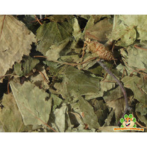 Nagertraum Berkenbladeren 60 gram