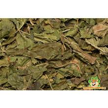 Nagertraum Moerbeibladeren 60 gram