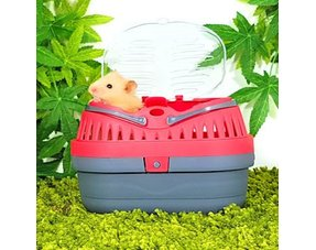 Hamster Transport boxes