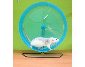 Rats Walking wheels