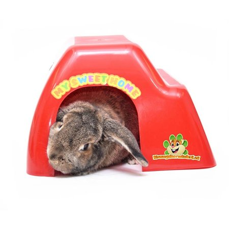 rodent house for rabbit