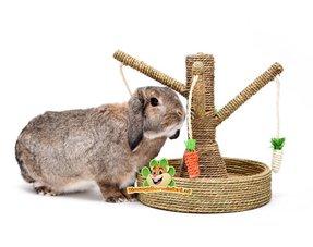 Kaninchen Spielzeug