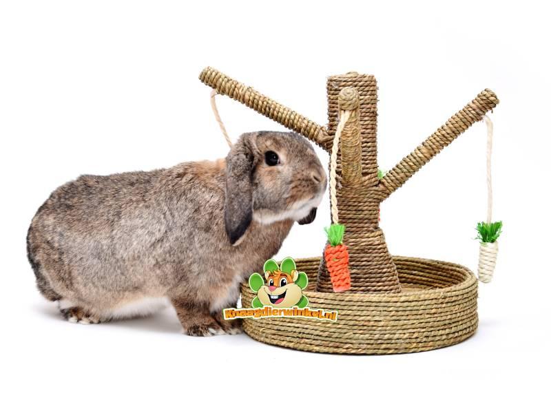 Spielzeug für Kaninchen und Spielzeug für Kaninchen