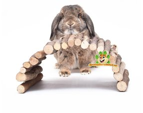 rabbits webshop, rabbits and articles
