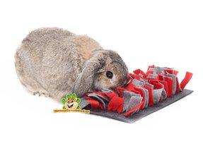 konijnen speelgoed voor konijn