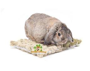 Kaninchen Snacks
