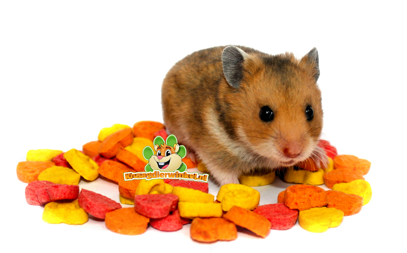 rodent snacks for mouse, hamster, rat, gerbil, rabbit. guinea pig, chinchilla and degu