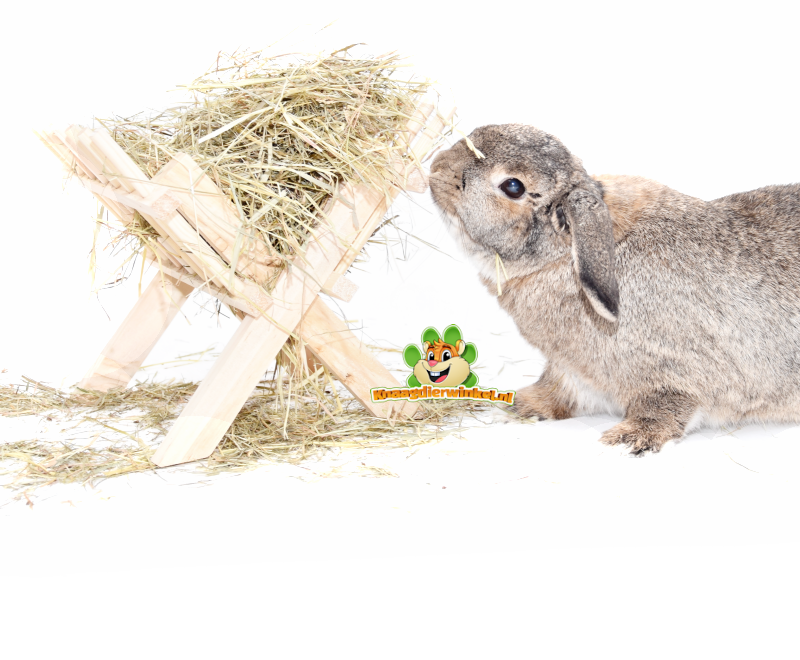 Hay for rabbit and rodent