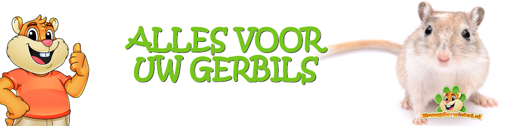 gerbil webshop for all supplies for your gerbils