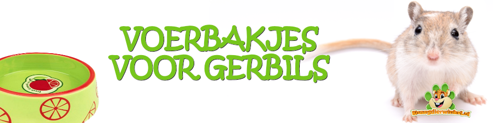 Food bowls for gerbils, gerbil food bowl in the gerbil webshop