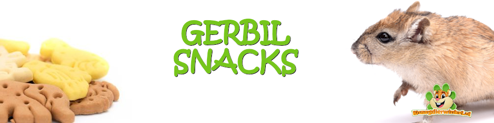 Gerbil snacks for gerbils in the gerbil webshop