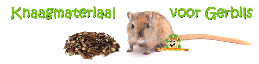 gerbil rodent material for gerbils in the gerbil webshop
