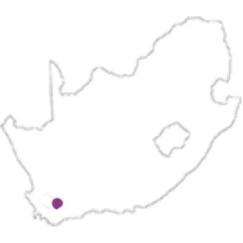 Stellenbosch (Z-Afrika)