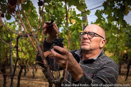 Jet en Jean-Paul Schmitt in de organische wijngaard Rittersberg