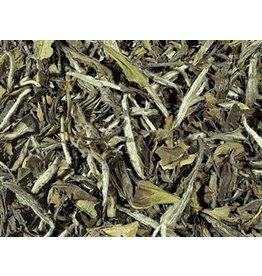 Tea Brokers Biologische white tea China Pai Mu Tan